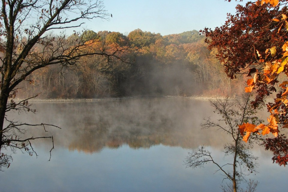 Mist over Forest Lake